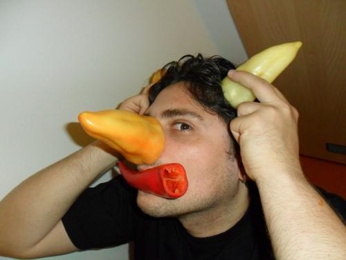 Rorq - paprykowy nos