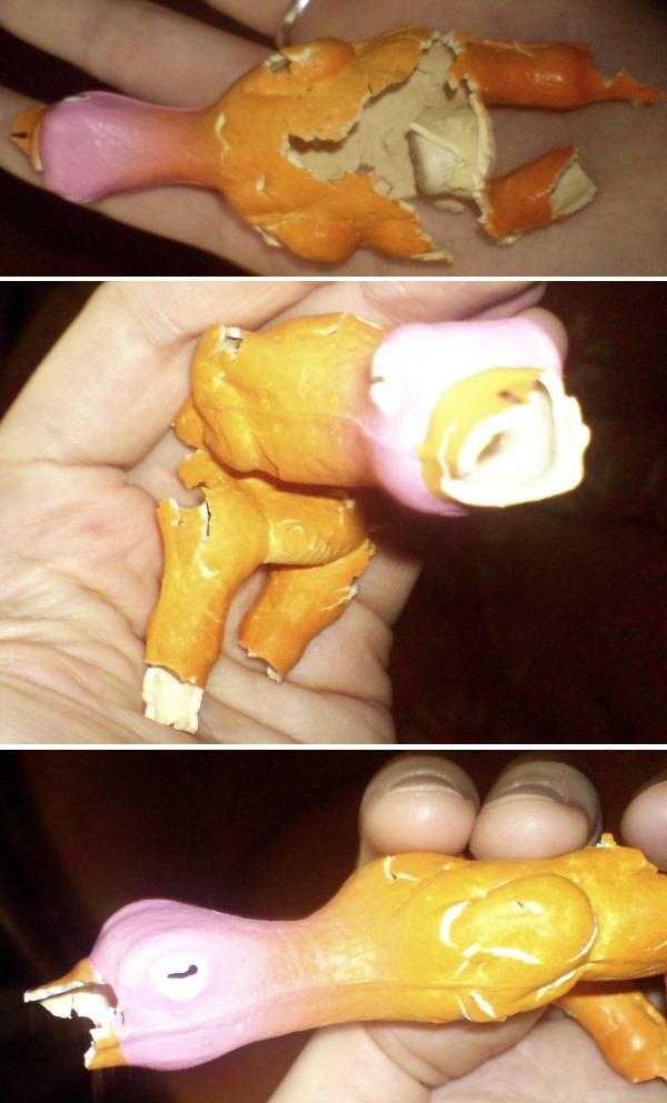 Truchło kaczuszki - smętne resztki zabawowe.